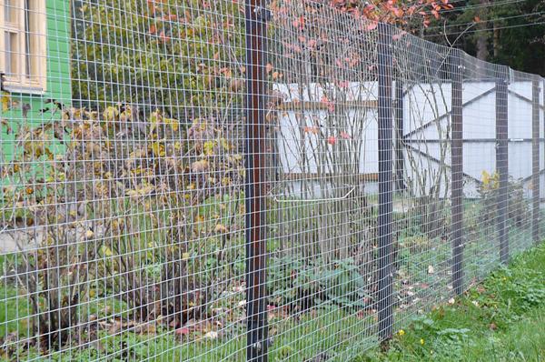 Как  сделать забор из сварной сетки